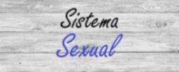 Sistema Sexual